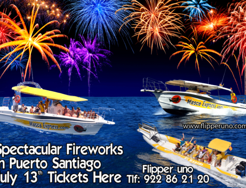Book with us to see the spectacular fireworks of Puerto de Santiago!